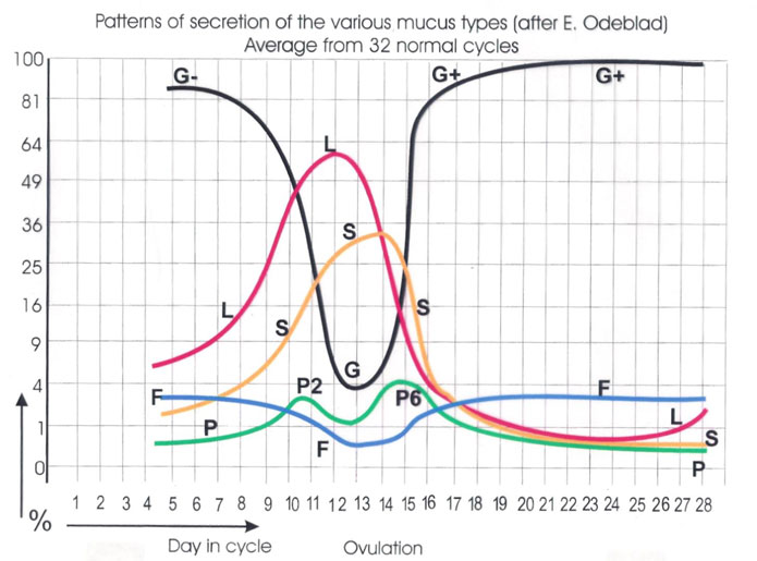 Graph-of-mucus-types_695